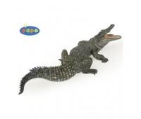 50055 Нильский крокодил