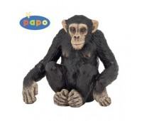 50106 Шимпанзе