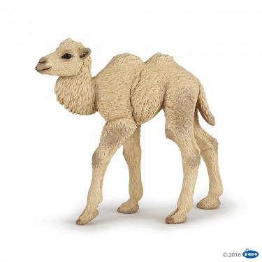 50221 Верблюжонок