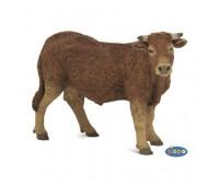 Жесткошерстная корова