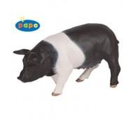 Черно-белая свинья