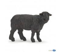 51167 Черная овца