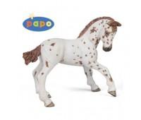 Апалузский конь