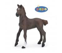 51536 Жеребенок гнедой верховой лошади