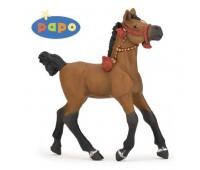 Жеребенок арабской лошади в парадной упряжке