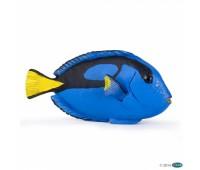56024 Рыба хирург